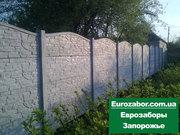 Еврозабор от производителя  в Запорожье - foto 0